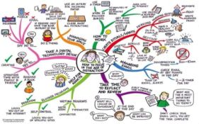 CMO Worthy Ideas for Career and Personal Life Balance